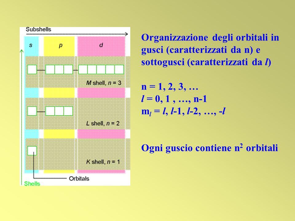 Organizzazione degli orbitali in gusci (caratterizzati da n) e sottogusci (caratterizzati da l) n = 1, 2, 3, … l = 0, 1, …, n-1 m l = l, l-1, l-2, …,