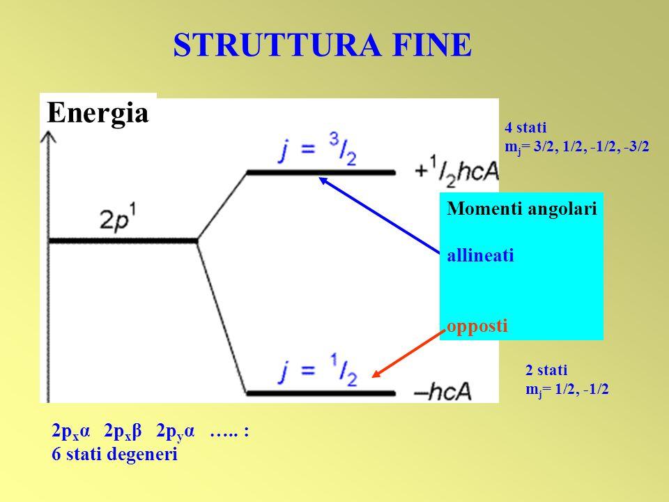 Energia Momenti angolari allineati opposti STRUTTURA FINE 4 stati m j = 3/2, 1/2, -1/2, -3/2 2 stati m j = 1/2, -1/2 2p x α 2p x β 2p y α ….. : 6 stat