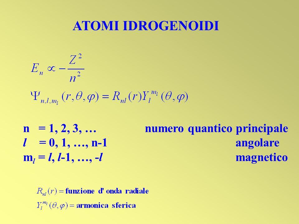 ATOMI IDROGENOIDI n = 1, 2, 3, … numero quantico principale l = 0, 1, …, n-1 angolare m l = l, l-1, …, -l magnetico