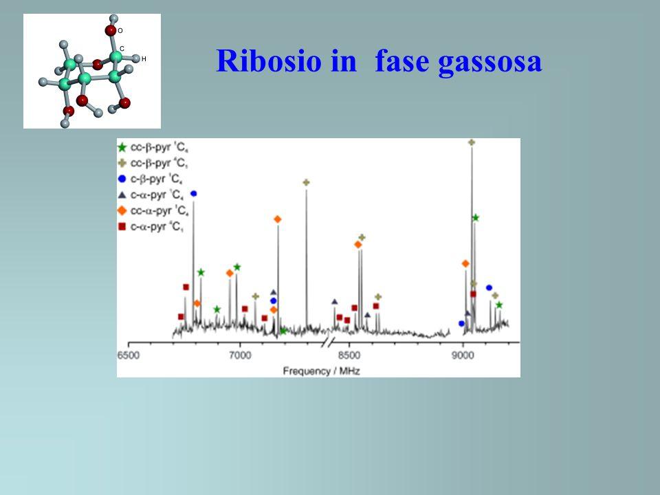 Ribosio in fase gassosa