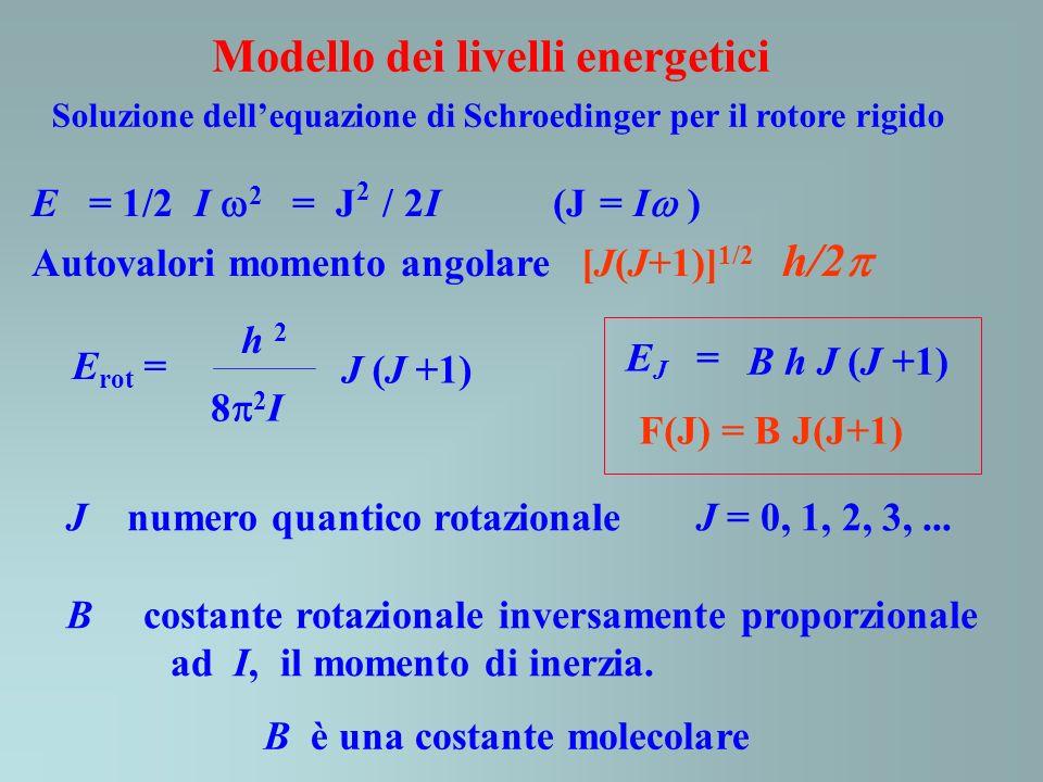 Soluzione dellequazione di Schroedinger per il rotore rigido E rot = J (J +1) h 2 8 2 I J numero quantico rotazionale J = 0, 1, 2, 3,... B costante ro