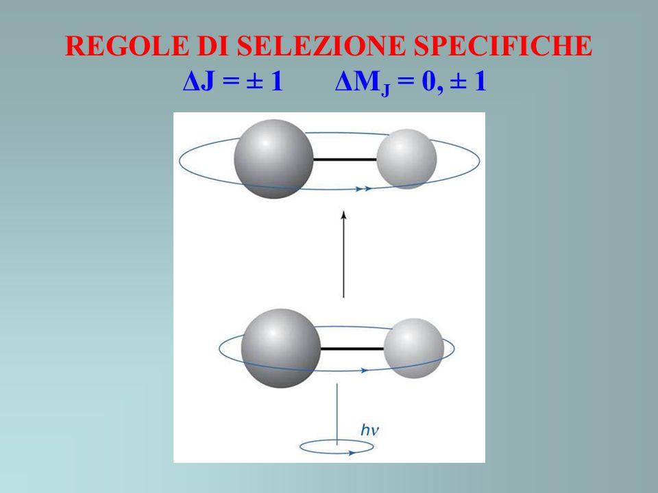 REGOLE DI SELEZIONE SPECIFICHE ΔJ = ± 1 ΔM J = 0, ± 1