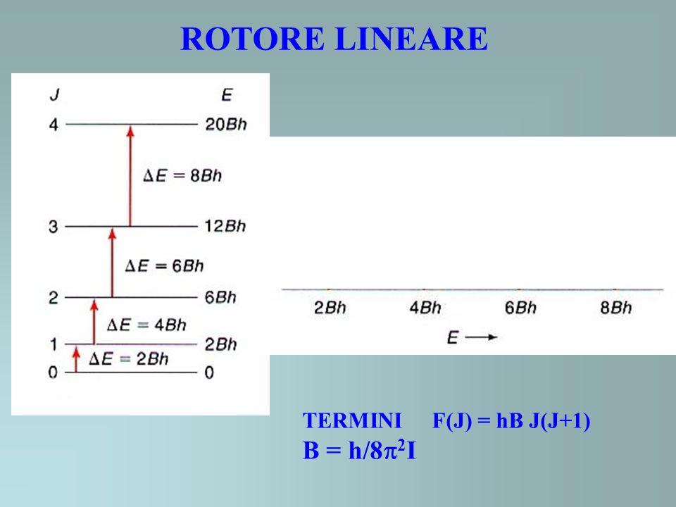 ROTORE LINEARE TERMINI F(J) = hB J(J+1) B = h/8 2 I