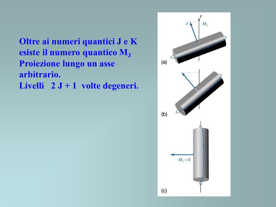 Oltre ai numeri quantici J e K esiste il numero quantico M J Proiezione lungo un asse arbitrario. Livelli 2 J + 1 volte degeneri.