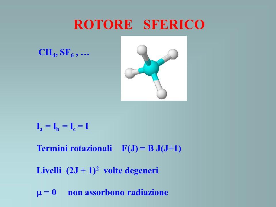 CH 4, SF 6, … ROTORE SFERICO I a = I b = I c = I Termini rotazionali F(J) = B J(J+1) Livelli (2J + 1) 2 volte degeneri = 0 non assorbono radiazione