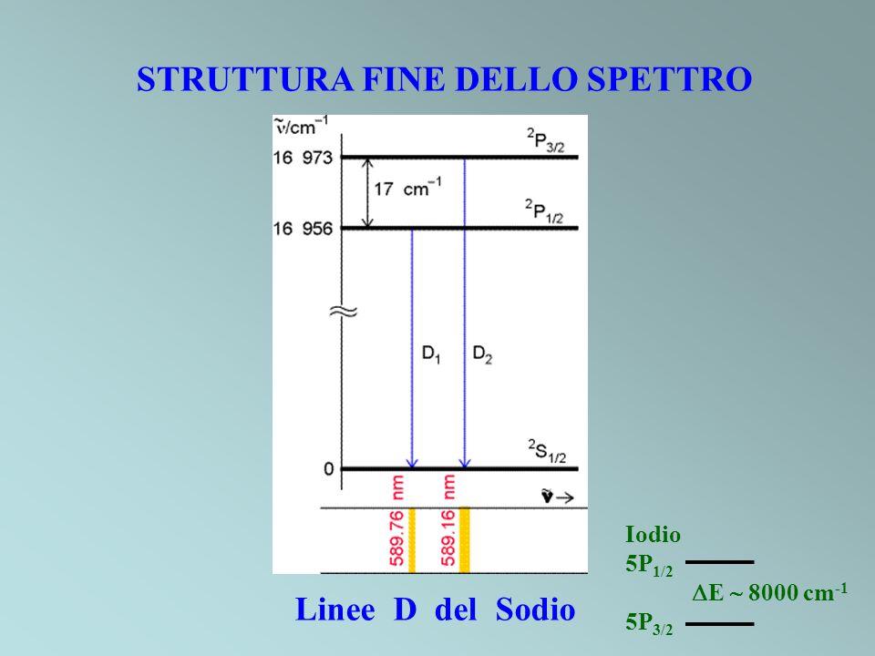 STRUTTURA FINE DELLO SPETTRO Linee D del Sodio Iodio 5P 1/2 E 8000 cm -1 5P 3/2