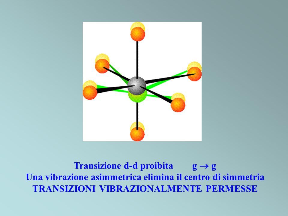 Transizione d-d proibita g g Una vibrazione asimmetrica elimina il centro di simmetria TRANSIZIONI VIBRAZIONALMENTE PERMESSE