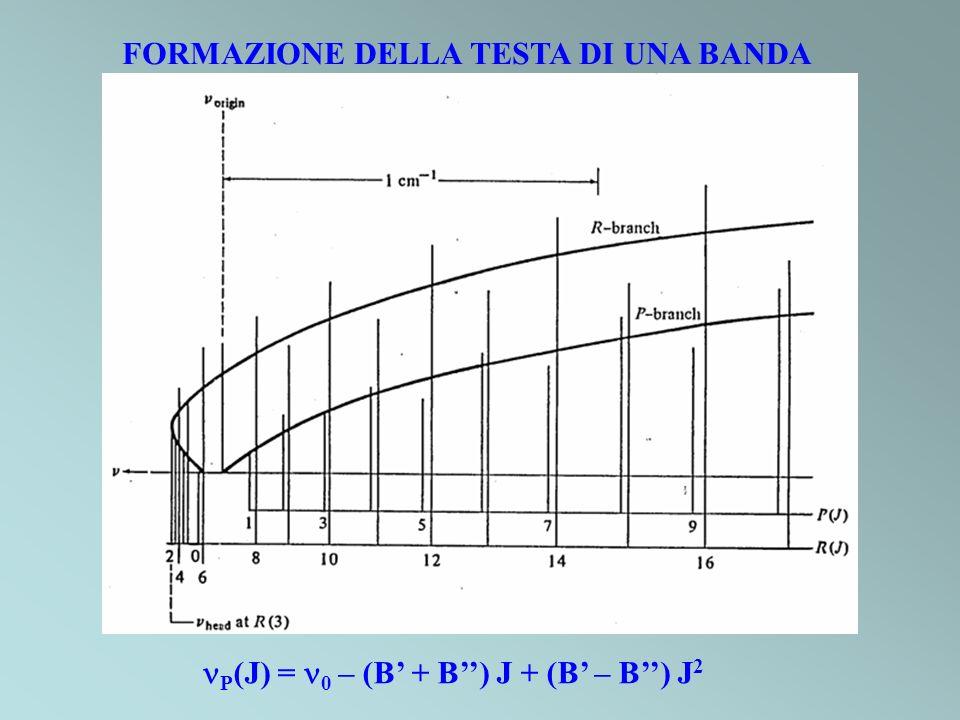 FORMAZIONE DELLA TESTA DI UNA BANDA P (J) = 0 – (B + B) J + (B – B) J 2