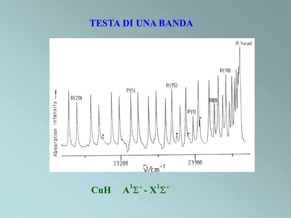 TESTA DI UNA BANDA CuH A 1 + - X 1 +