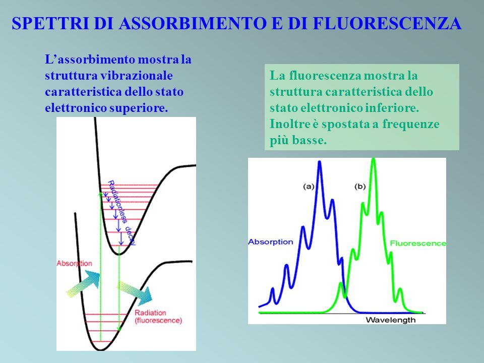SPETTRI DI ASSORBIMENTO E DI FLUORESCENZA Lassorbimento mostra la struttura vibrazionale caratteristica dello stato elettronico superiore. La fluoresc