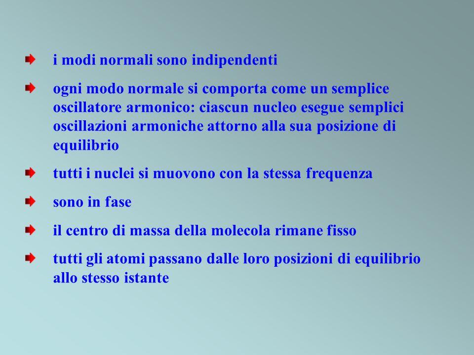 i modi normali sono indipendenti ogni modo normale si comporta come un semplice oscillatore armonico: ciascun nucleo esegue semplici oscillazioni armo