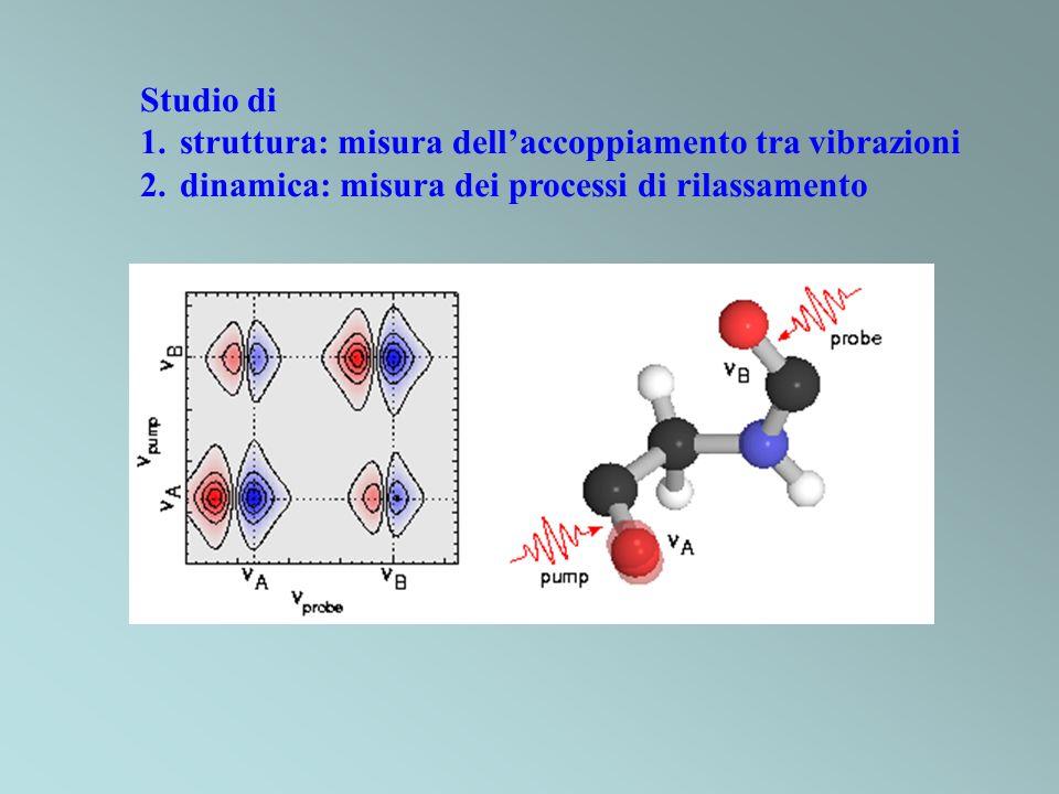 Studio di 1.struttura: misura dellaccoppiamento tra vibrazioni 2.dinamica: misura dei processi di rilassamento