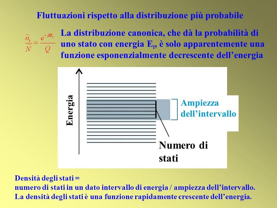 Numero di stati Ampiezza dellintervallo Energia Fluttuazioni rispetto alla distribuzione più probabile La distribuzione canonica, che dà la probabilità di uno stato con energia E i, è solo apparentemente una funzione esponenzialmente decrescente dellenergia Densità degli stati = numero di stati in un dato intervallo di energia / ampiezza dellintervallo.