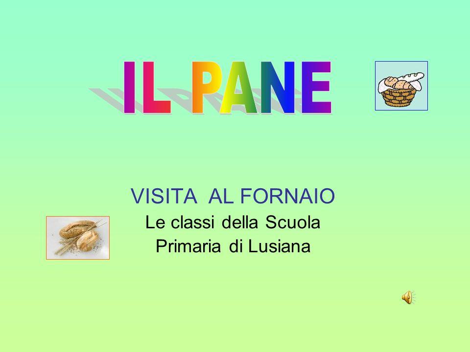 VISITA AL FORNAIO Le classi della Scuola Primaria di Lusiana