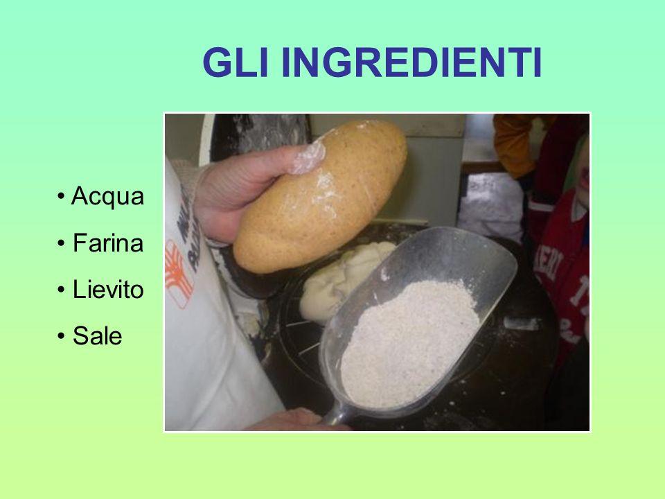 GLI INGREDIENTI Acqua Farina Lievito Sale