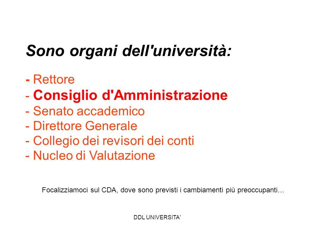 DDL UNIVERSITA' Sono organi dell'università: - Rettore - Consiglio d'Amministrazione - Senato accademico - Direttore Generale - Collegio dei revisori