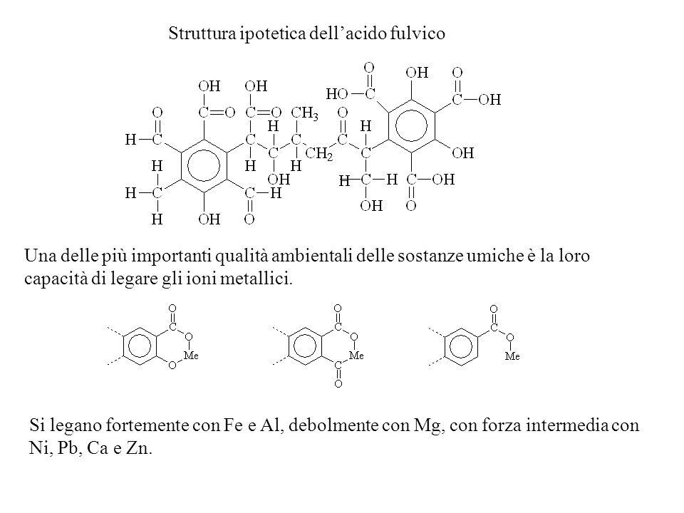 Struttura ipotetica dellacido fulvico Una delle più importanti qualità ambientali delle sostanze umiche è la loro capacità di legare gli ioni metallici.