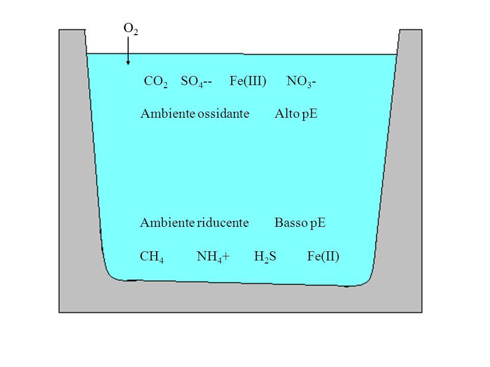 O2O2 CO 2 NO 3 -Fe(III) O2O2 SO 4 -- Ambiente ossidante Alto pE Ambiente riducente Basso pE CH 4 NH 4 +H2SH2SFe(II)