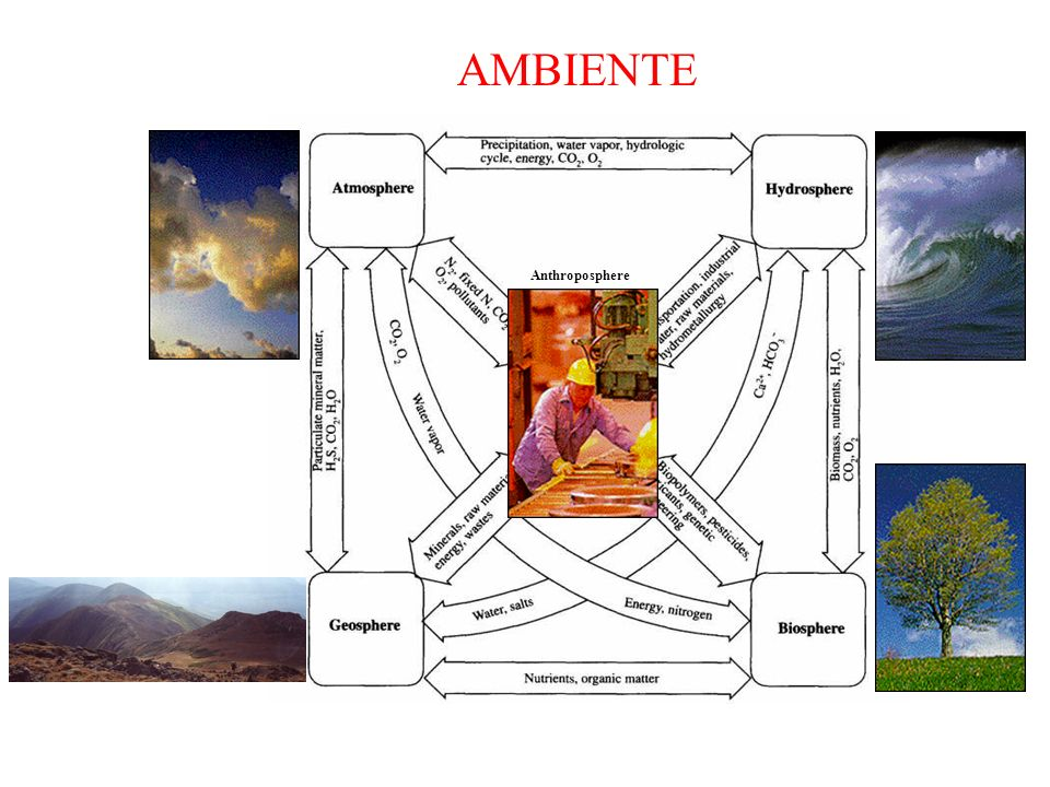 Anthroposphere AMBIENTE