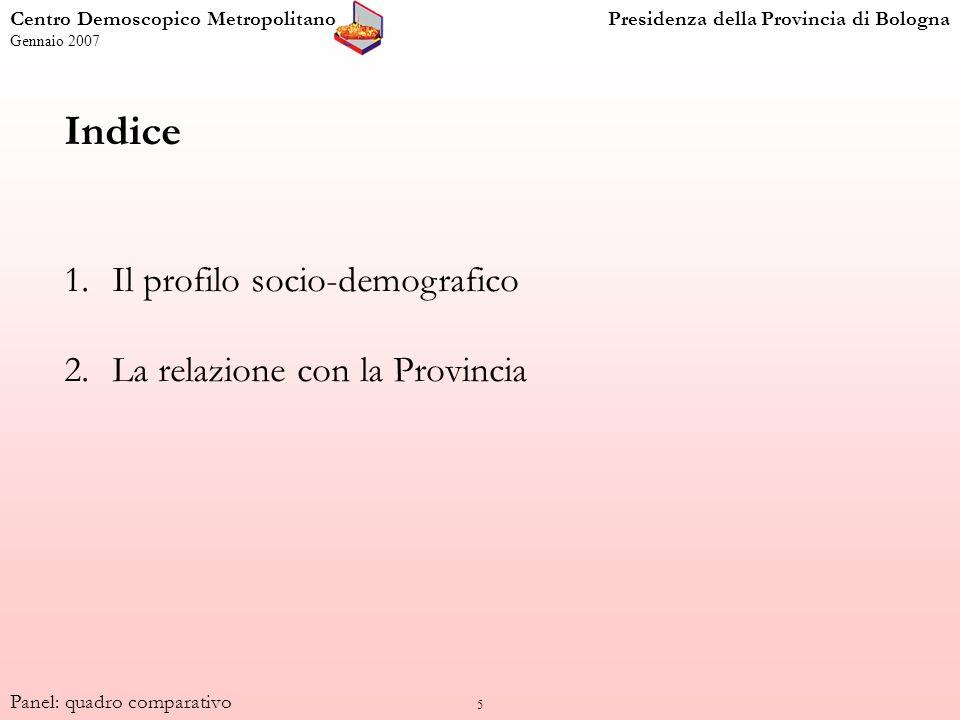 5 Indice 1.Il profilo socio-demografico 2.La relazione con la Provincia Centro Demoscopico MetropolitanoPresidenza della Provincia di Bologna Gennaio 2007 Panel: quadro comparativo
