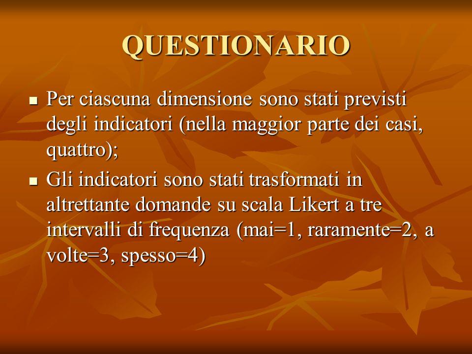 QUESTIONARIO Per ciascuna dimensione sono stati previsti degli indicatori (nella maggior parte dei casi, quattro); Per ciascuna dimensione sono stati