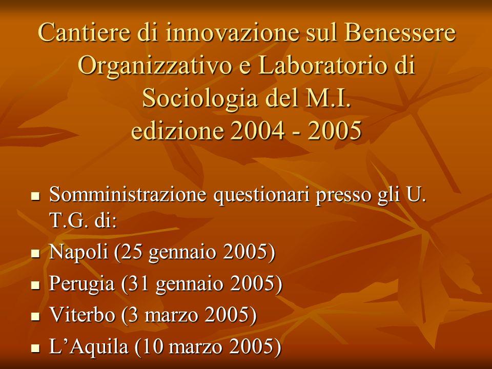 Cantiere di innovazione sul Benessere Organizzativo e Laboratorio di Sociologia del M.I. edizione 2004 - 2005 Somministrazione questionari presso gli