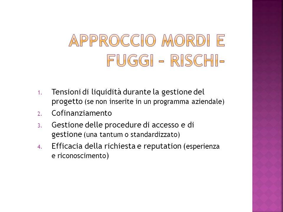1. Tensioni di liquidità durante la gestione del progetto (se non inserite in un programma aziendale) 2. Cofinanziamento 3. Gestione delle procedure d