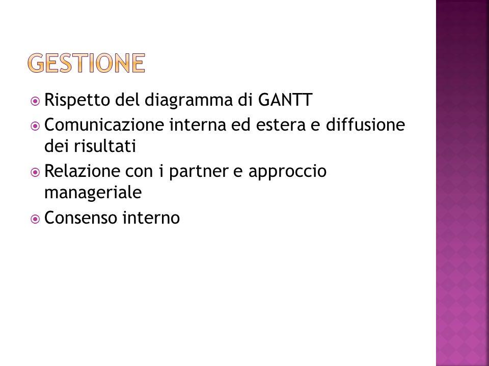 Rispetto del diagramma di GANTT Comunicazione interna ed estera e diffusione dei risultati Relazione con i partner e approccio manageriale Consenso interno