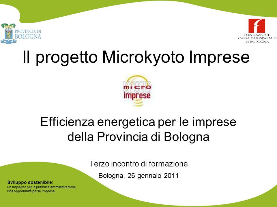 Sviluppo sostenibile: un impegno per la pubblica amministrazione, una opportunità per le imprese. Il progetto Microkyoto Imprese Efficienza energetica