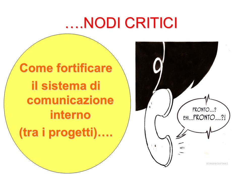 ….NODI CRITICI Come fortificare il sistema di comunicazione interno (tra i progetti)….