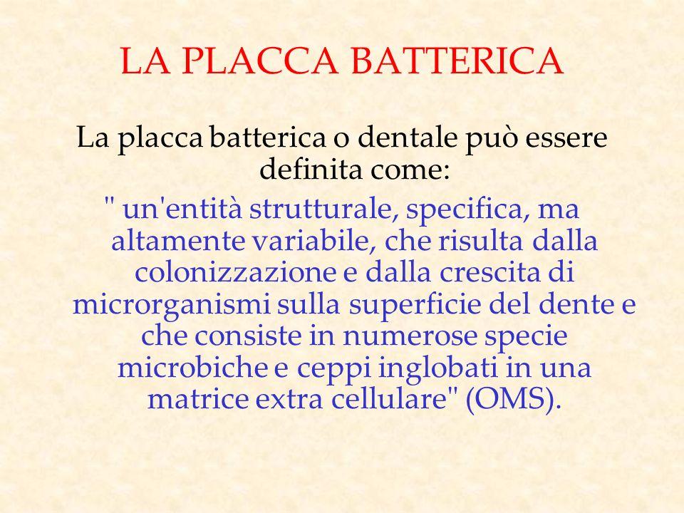 LA PLACCA BATTERICA La placca batterica o dentale può essere definita come: