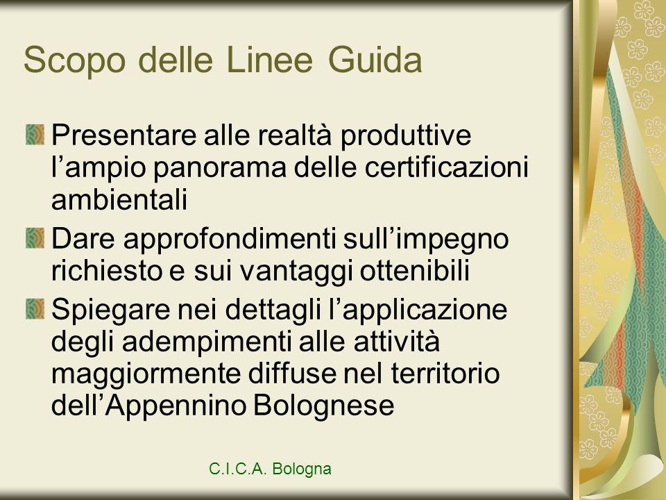 Scopo delle Linee Guida Presentare alle realtà produttive lampio panorama delle certificazioni ambientali Dare approfondimenti sullimpegno richiesto e
