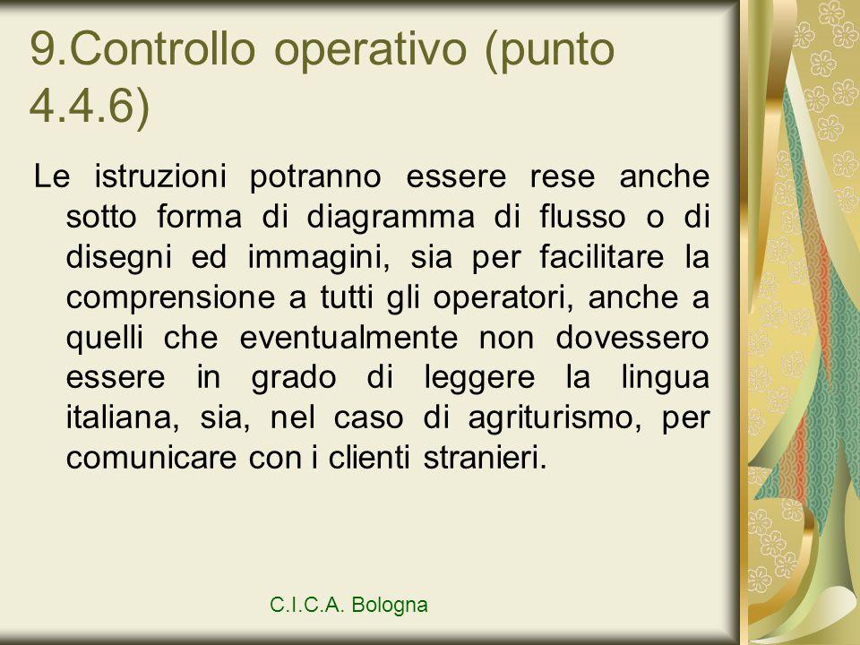9.Controllo operativo (punto 4.4.6) Le istruzioni potranno essere rese anche sotto forma di diagramma di flusso o di disegni ed immagini, sia per faci