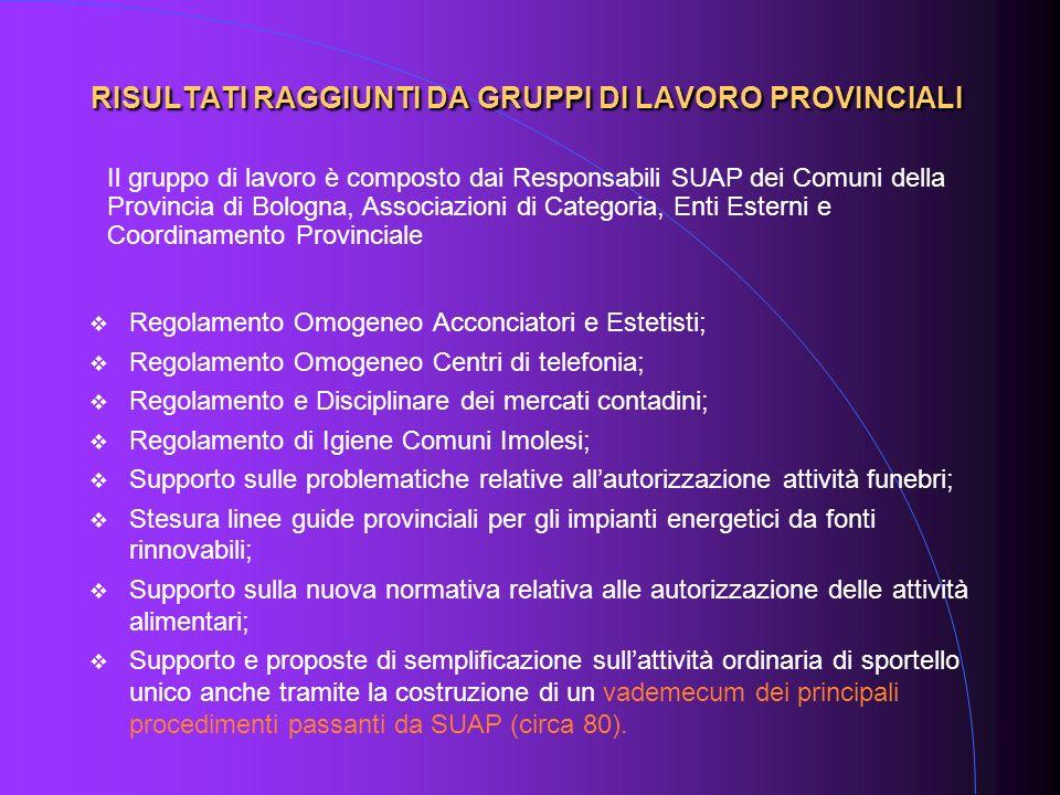 RISULTATI RAGGIUNTI DA GRUPPI DI LAVORO PROVINCIALI Regolamento Omogeneo Acconciatori e Estetisti; Regolamento Omogeneo Centri di telefonia; Regolamen