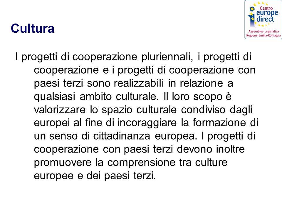 Cultura I progetti di cooperazione pluriennali, i progetti di cooperazione e i progetti di cooperazione con paesi terzi sono realizzabili in relazione a qualsiasi ambito culturale.