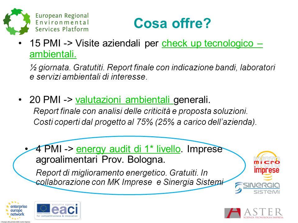 Cosa offre. 15 PMI -> Visite aziendali per check up tecnologico – ambientali.