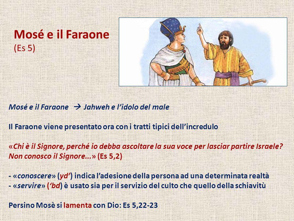 Mosé e il Faraone (Es 5) Mosé e il Faraone Jahweh e lidolo del male Il Faraone viene presentato ora con i tratti tipici dellincredulo «Chi è il Signor