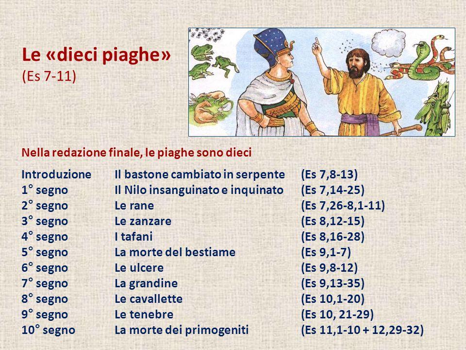 Le «dieci piaghe» (Es 7-11) Nella redazione finale, le piaghe sono dieci IntroduzioneIl bastone cambiato in serpente(Es 7,8-13) 1° segnoIl Nilo insang
