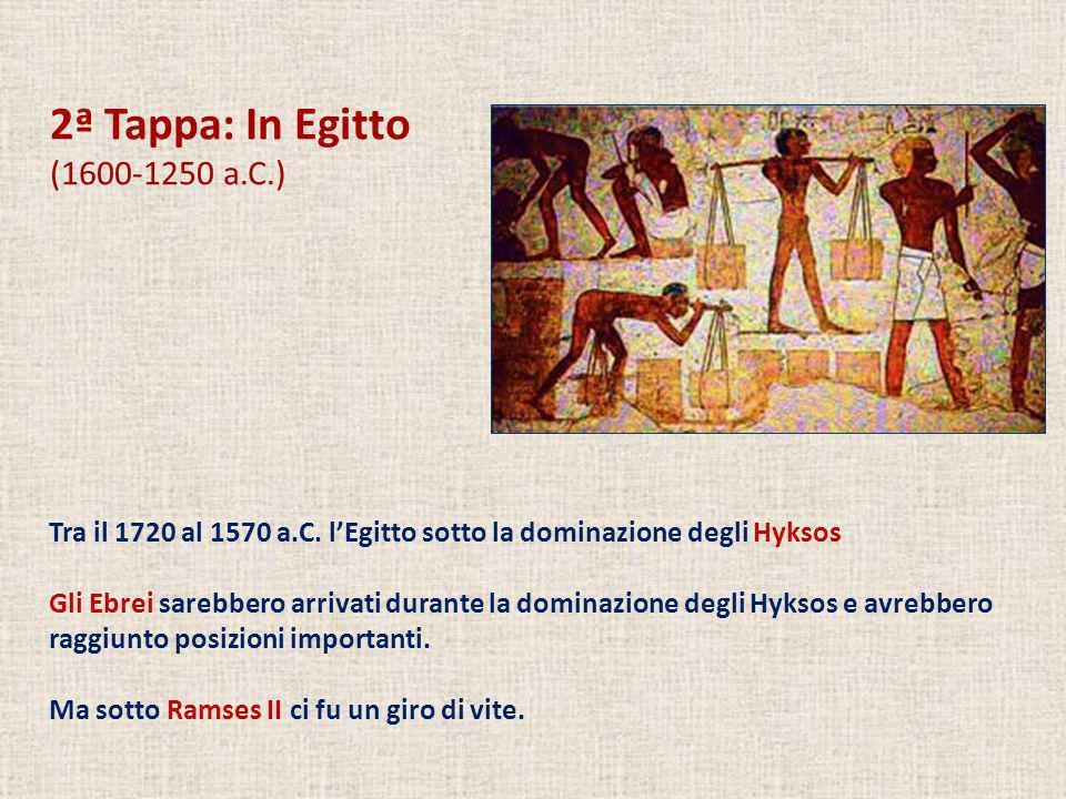 2ª Tappa: In Egitto (1600-1250 a.C.) Tra il 1720 al 1570 a.C. lEgitto sotto la dominazione degli Hyksos Gli Ebrei sarebbero arrivati durante la domina