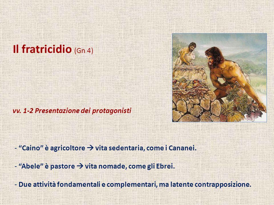 Il fratricidio (Gn 4) vv. 1-2 Presentazione dei protagonisti - Caino è agricoltore vita sedentaria, come i Cananei. - Abele è pastore vita nomade, com
