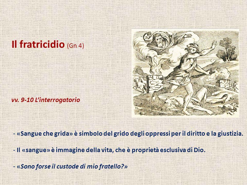 Il fratricidio (Gn 4) vv. 9-10 Linterrogatorio - «Sangue che grida» è simbolo del grido degli oppressi per il diritto e la giustizia. - Il «sangue» è