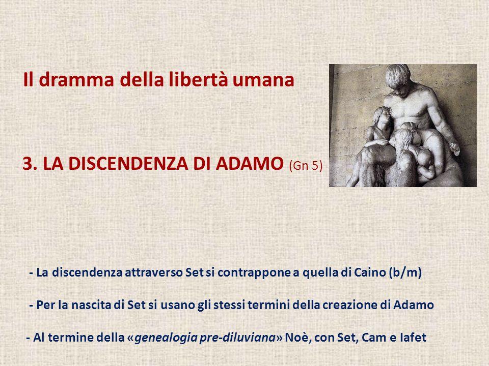 - La discendenza attraverso Set si contrappone a quella di Caino (b/m) - Per la nascita di Set si usano gli stessi termini della creazione di Adamo -