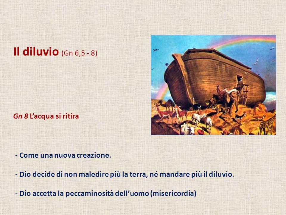 Il diluvio (Gn 6,5 - 8) Gn 8 Lacqua si ritira - Come una nuova creazione. - Dio decide di non maledire più la terra, né mandare più il diluvio. - Dio