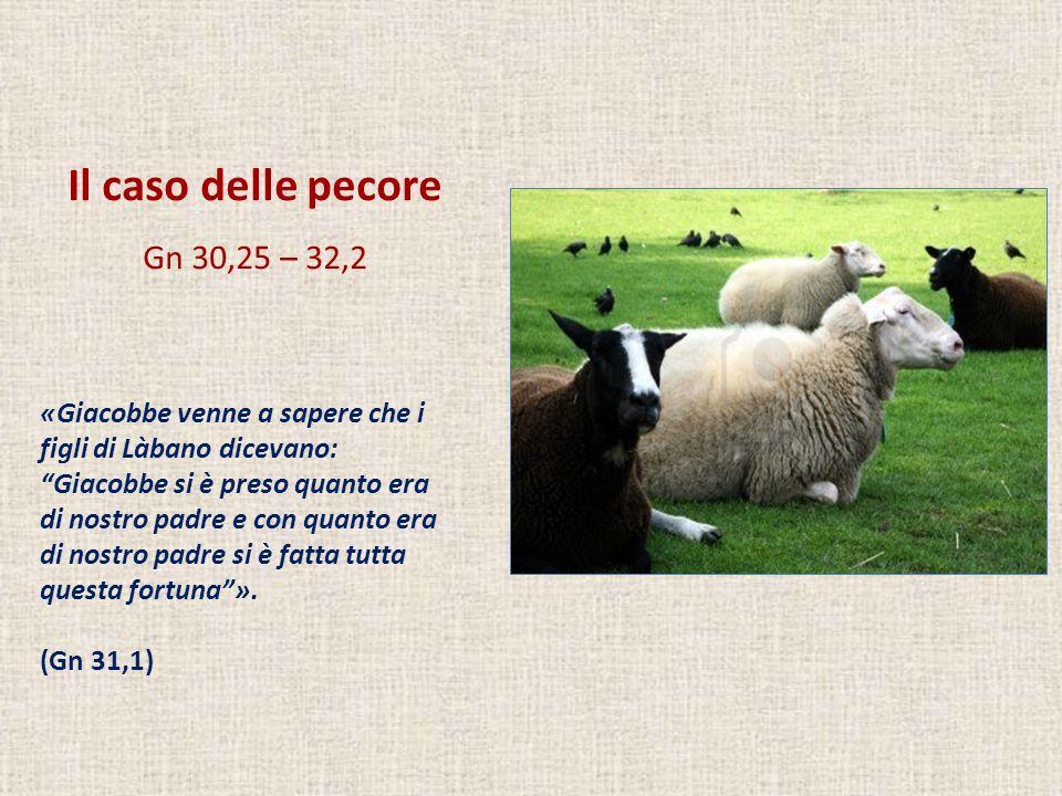 Il caso delle pecore Gn 30,25 – 32,2 «Giacobbe venne a sapere che i figli di Làbano dicevano: Giacobbe si è preso quanto era di nostro padre e con qua