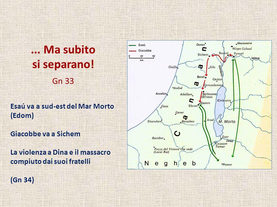 ... Ma subito si separano! Gn 33 Esaú va a sud-est del Mar Morto (Edom) Giacobbe va a Sichem La violenza a Dina e il massacro compiuto dai suoi fratel