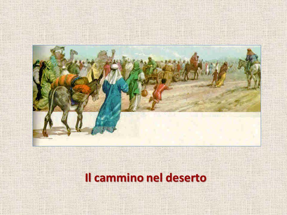 Il cammino nel deserto
