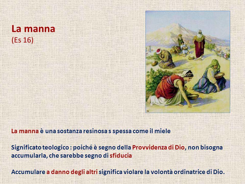 La manna è una sostanza resinosa s spessa come il miele Significato teologico : poiché è segno della Provvidenza di Dio, non bisogna accumularla, che