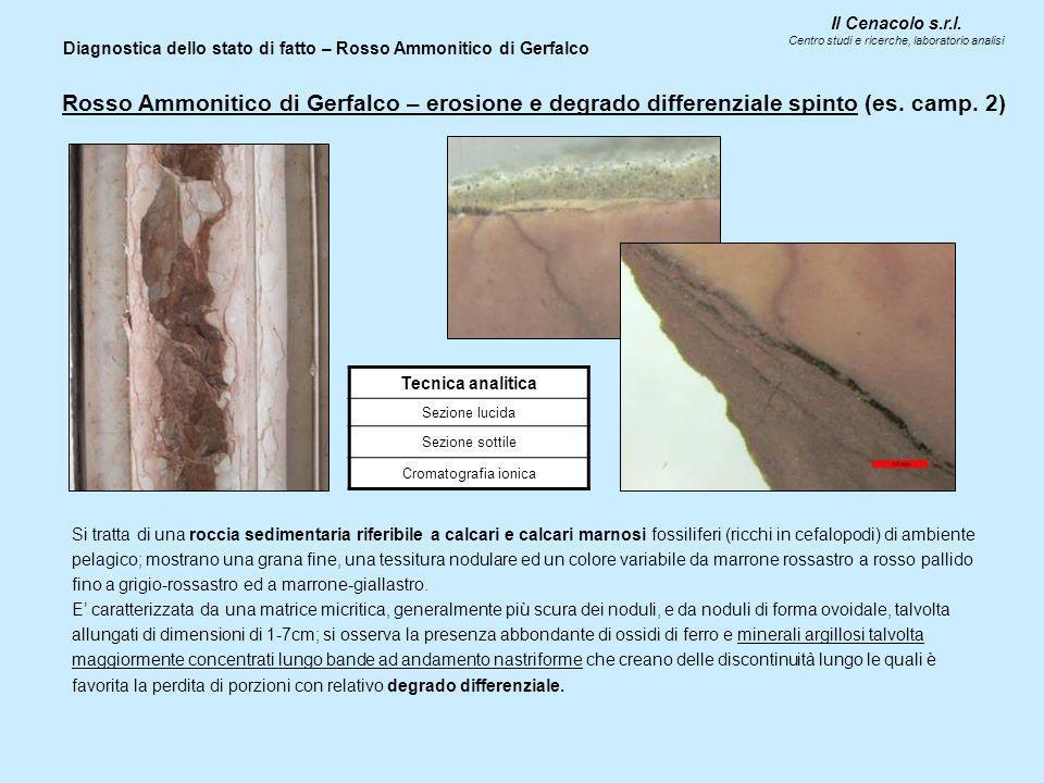 Il Cenacolo s.r.l. Centro studi e ricerche, laboratorio analisi Diagnostica dello stato di fatto – Rosso Ammonitico di Gerfalco Tecnica analitica Sezi