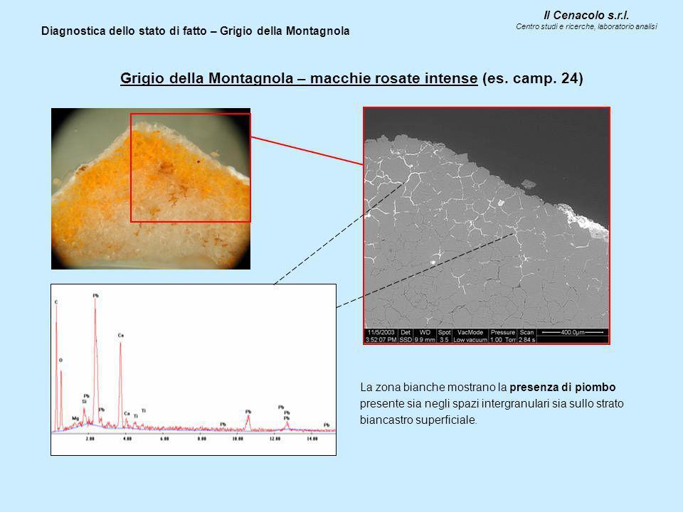 Il Cenacolo s.r.l. Centro studi e ricerche, laboratorio analisi Diagnostica dello stato di fatto – Grigio della Montagnola Grigio della Montagnola – m