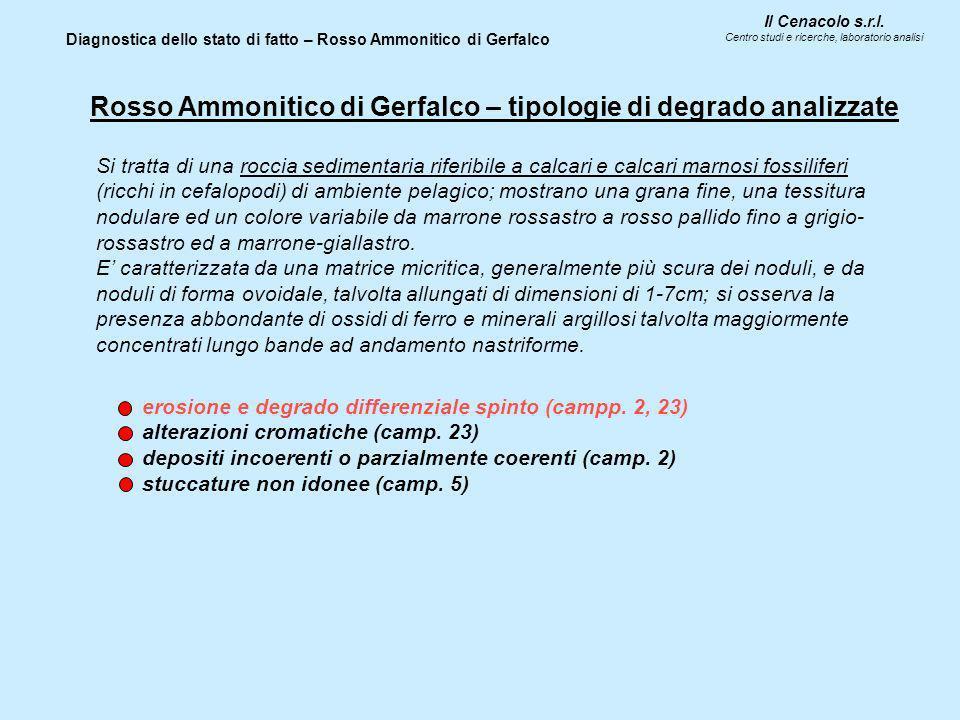 Il Cenacolo s.r.l. Centro studi e ricerche, laboratorio analisi Diagnostica dello stato di fatto – Rosso Ammonitico di Gerfalco Rosso Ammonitico di Ge